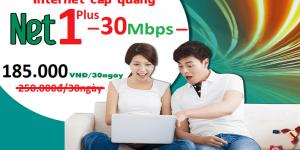 Gói Cước internet Cáp Quang Viettel NET1 PLUS (30Mbps)